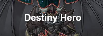 Destiny Hero
