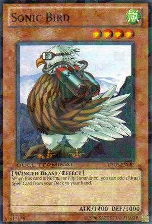 Sonic Bird