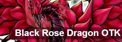 Black Rose Dragon OTK