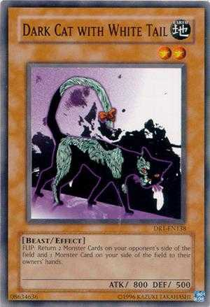Dark Cat With White Tail Yugioh Duel Links
